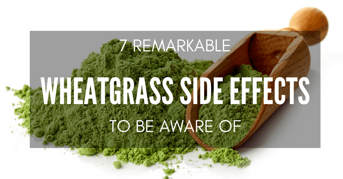 wheatgrass side effects