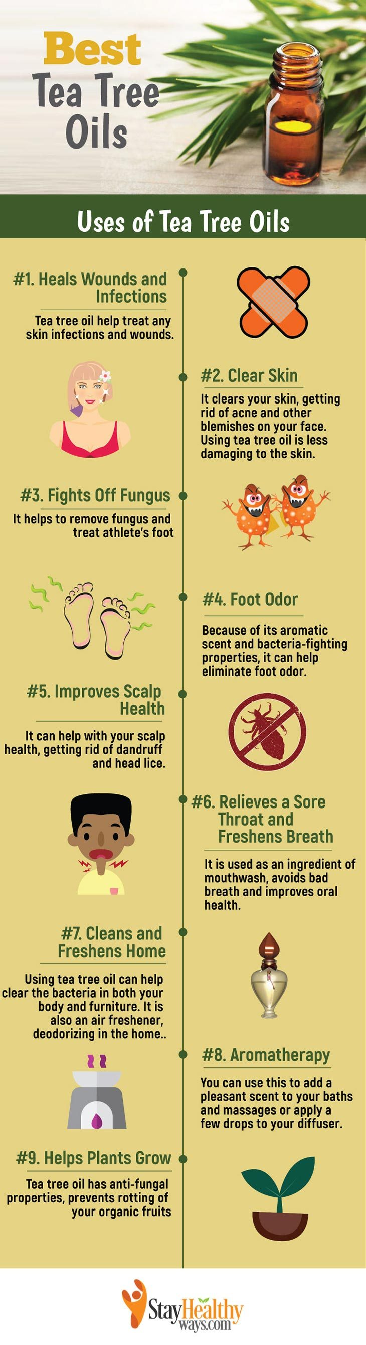 best tea tree oil infographic