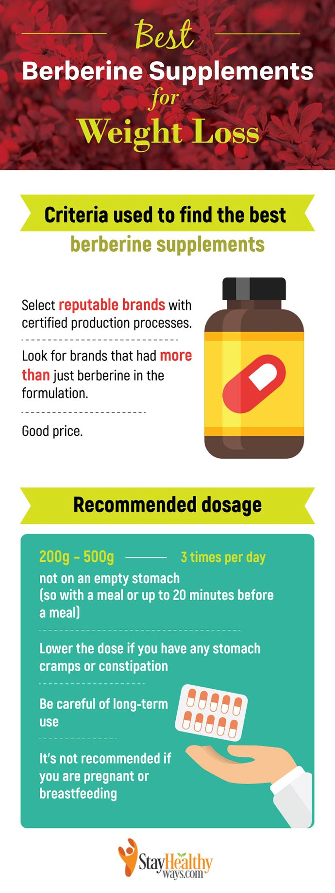 best berberine supplements infographic