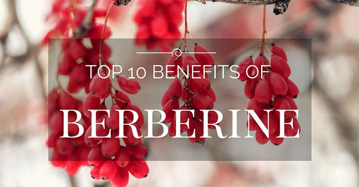 benefits of berberine